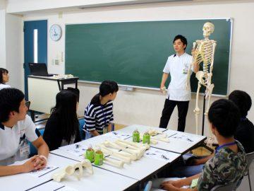 骨マニアの人はこの骨模型を見るとコウコツな表情をするそうです。骨だけにね!
