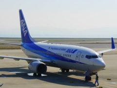 安心の全日本空輸さんにて。