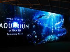 水族館でも海でも体験できない話題の体験型デジタルアート展