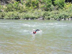 流れに逆らって泳ぐ訓練。